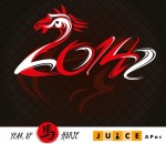 2014 Year of the Wooden Horse